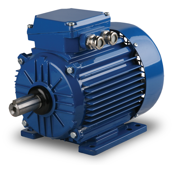 Elektrim Metric IEC Low Voltage Motors