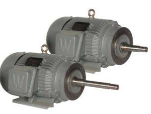 TEFC Premium Efficiency Close Coupled Pump Motors