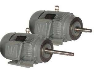 Premium Efficiency Close Coupled Pump Motors