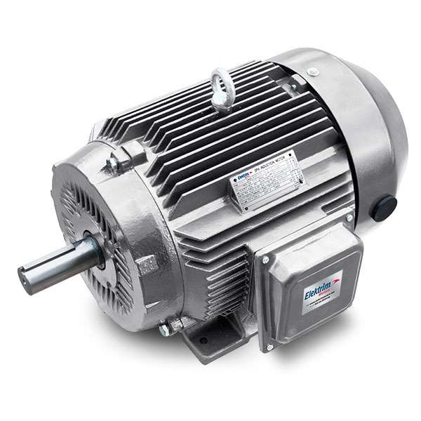 Elektrim Oil Well Pump Motors - 34NFM-3-25-12