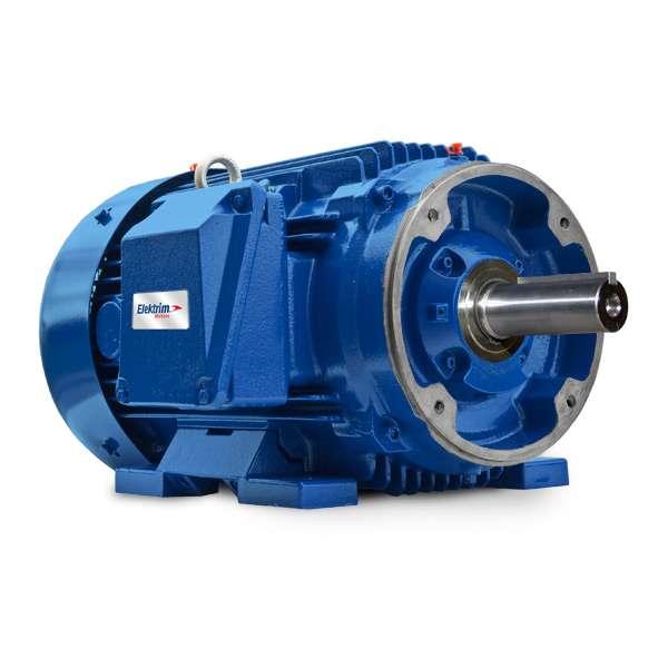 Elektrim 575V Severe Duty Motors - 60NCS-3-3-18/575