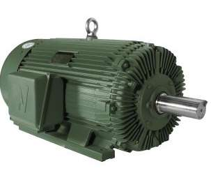 PEWWE300-18-586/7 - Advanced Design Rock Crusher Motor