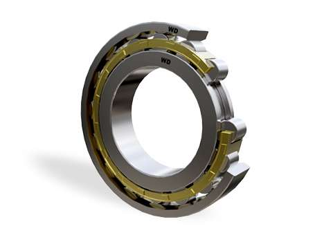 N220E - Single Row Cylindrical Roller Bearing